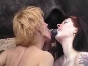 This zoophile is really craving stallion jizz